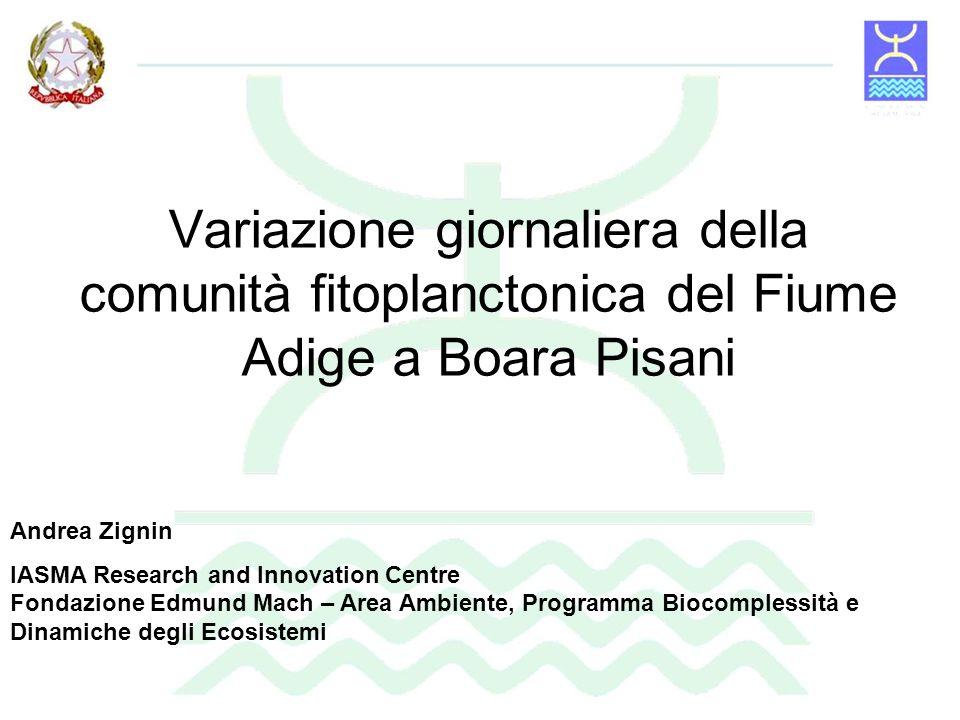 Variazione giornaliera della comunità fitoplanctonica del Fiume Adige a Boara Pisani