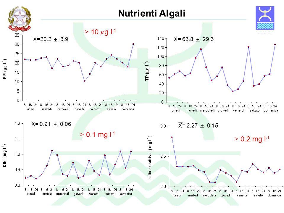 Nutrienti Algali > 10 mg l-1 > 0.1 mg l-1 > 0.2 mg l-1