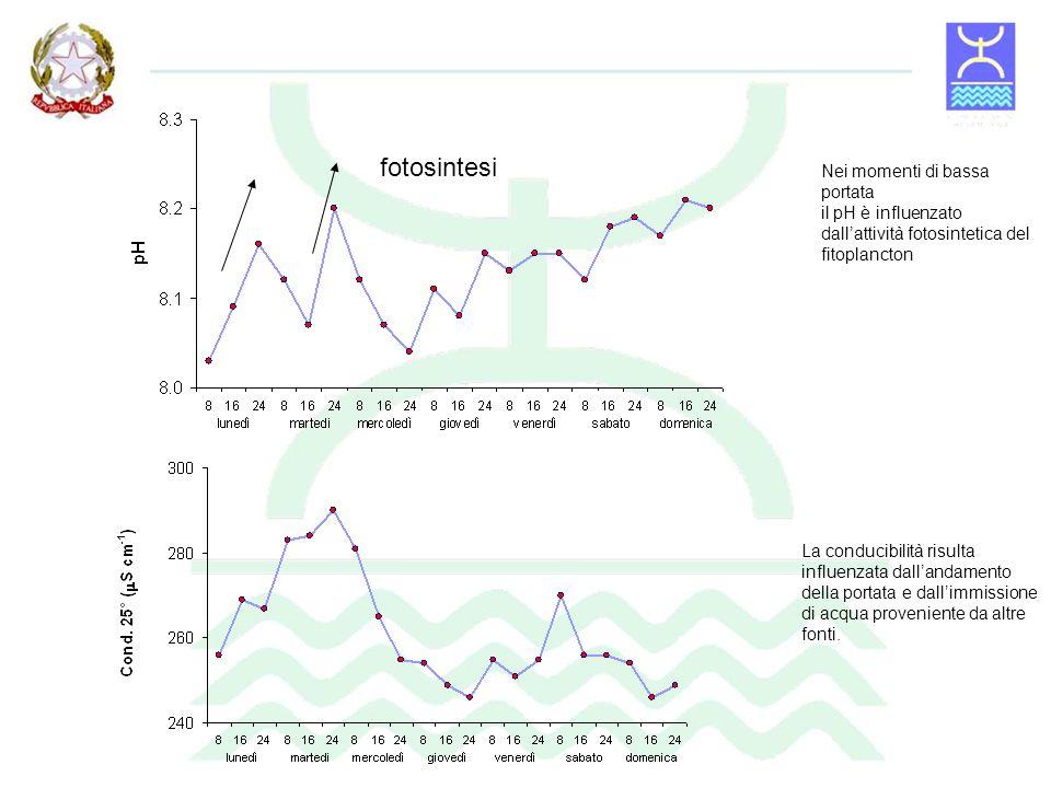fotosintesi Nei momenti di bassa portata