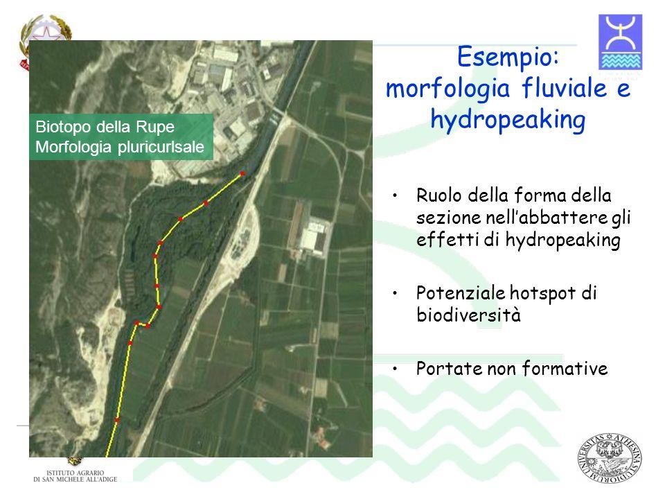 Esempio: morfologia fluviale e hydropeaking