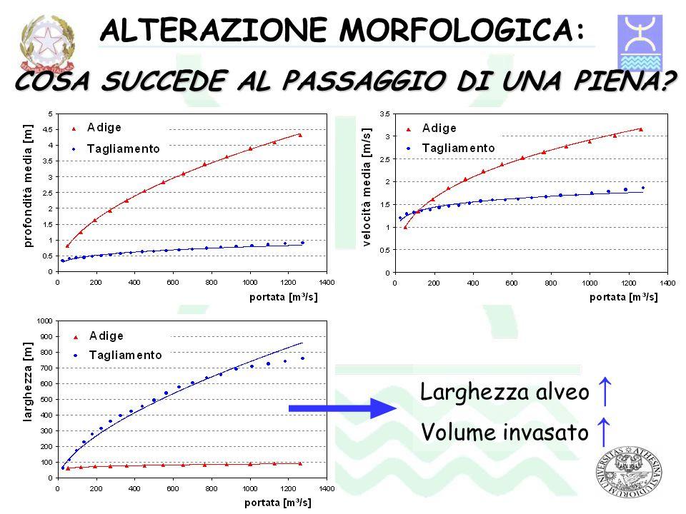 ALTERAZIONE MORFOLOGICA: COSA SUCCEDE AL PASSAGGIO DI UNA PIENA