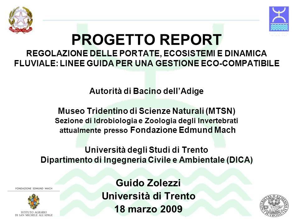 Guido Zolezzi Università di Trento 18 marzo 2009