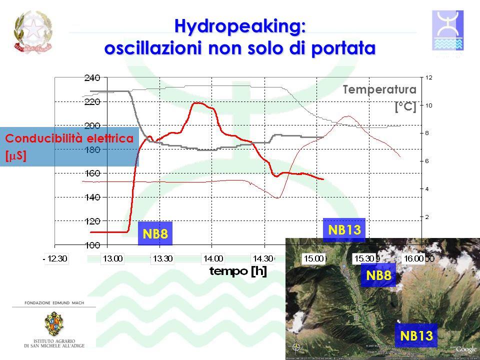 Hydropeaking: oscillazioni non solo di portata