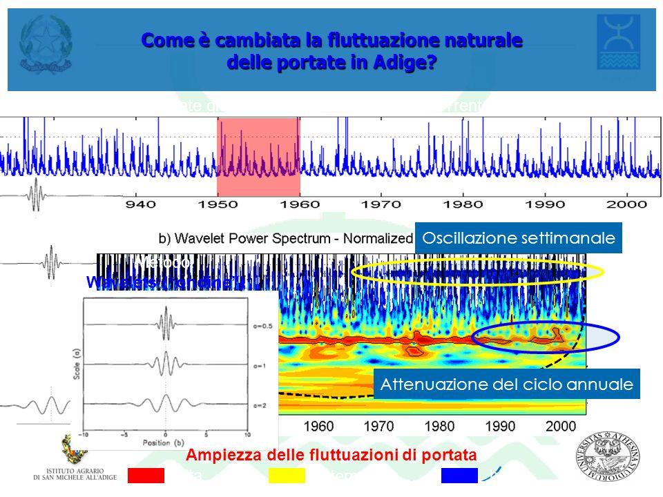 Come è cambiata la fluttuazione naturale delle portate in Adige
