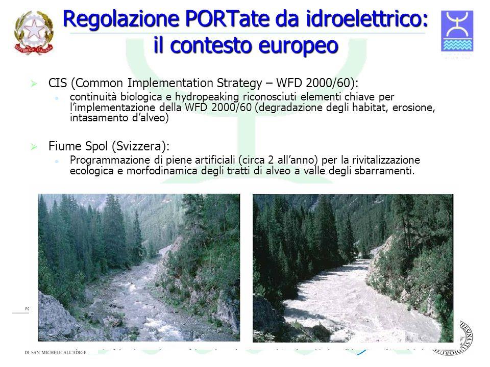 Regolazione PORTate da idroelettrico: il contesto europeo