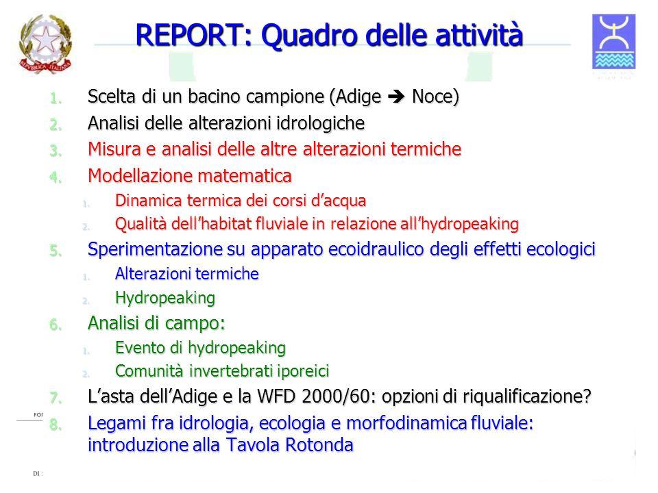 REPORT: Quadro delle attività