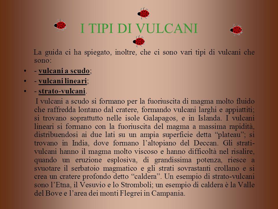 I TIPI DI VULCANI La guida ci ha spiegato, inoltre, che ci sono vari tipi di vulcani che sono: - vulcani a scudo;