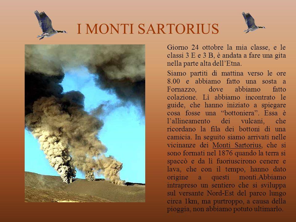I MONTI SARTORIUS Giorno 24 ottobre la mia classe, e le classi 3 E e 3 B, è andata a fare una gita nella parte alta dell'Etna.