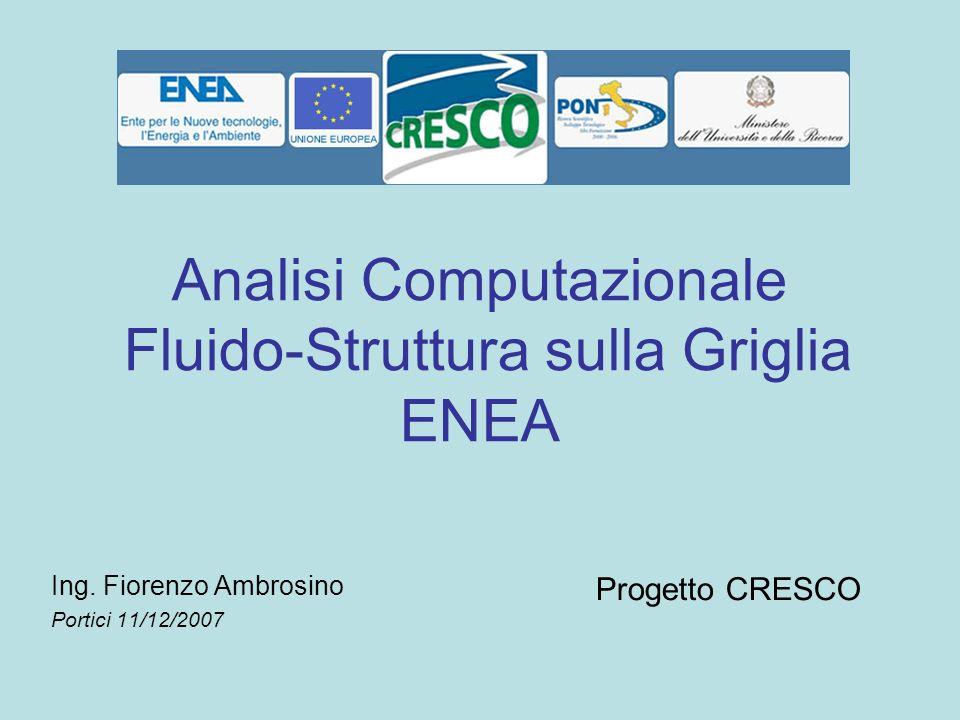 Analisi Computazionale Fluido-Struttura sulla Griglia ENEA