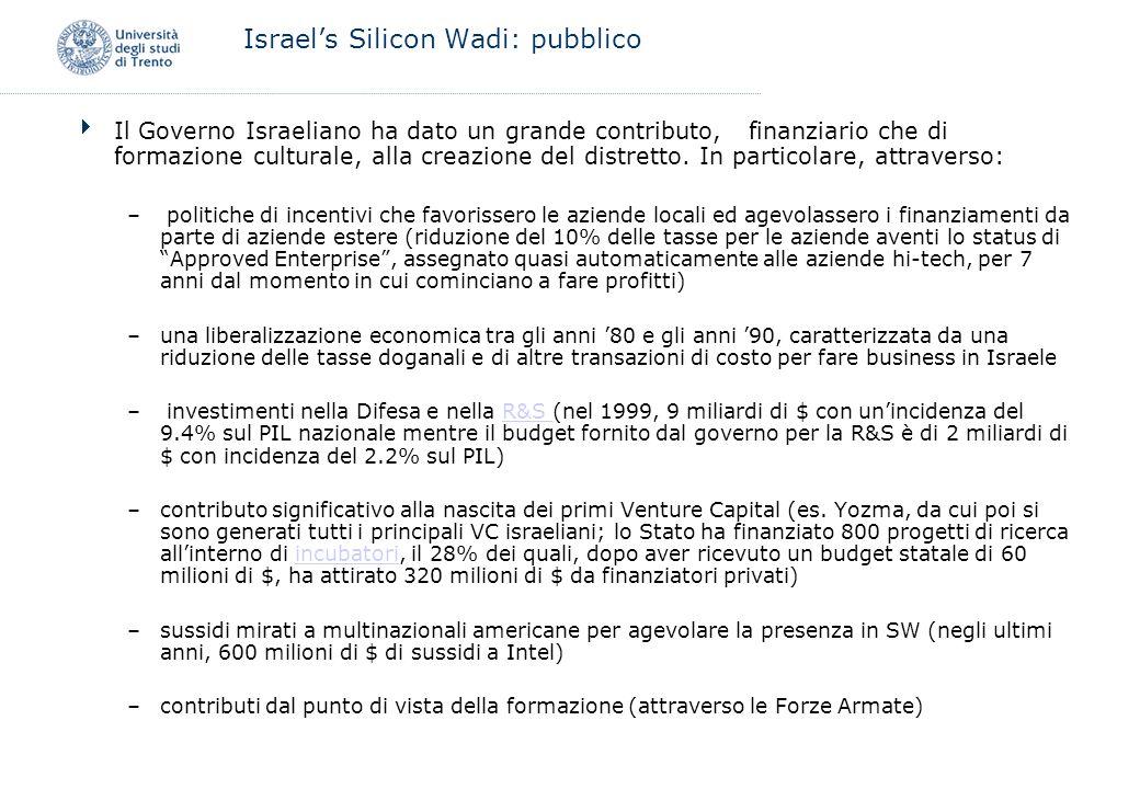 Israel's Silicon Wadi: pubblico