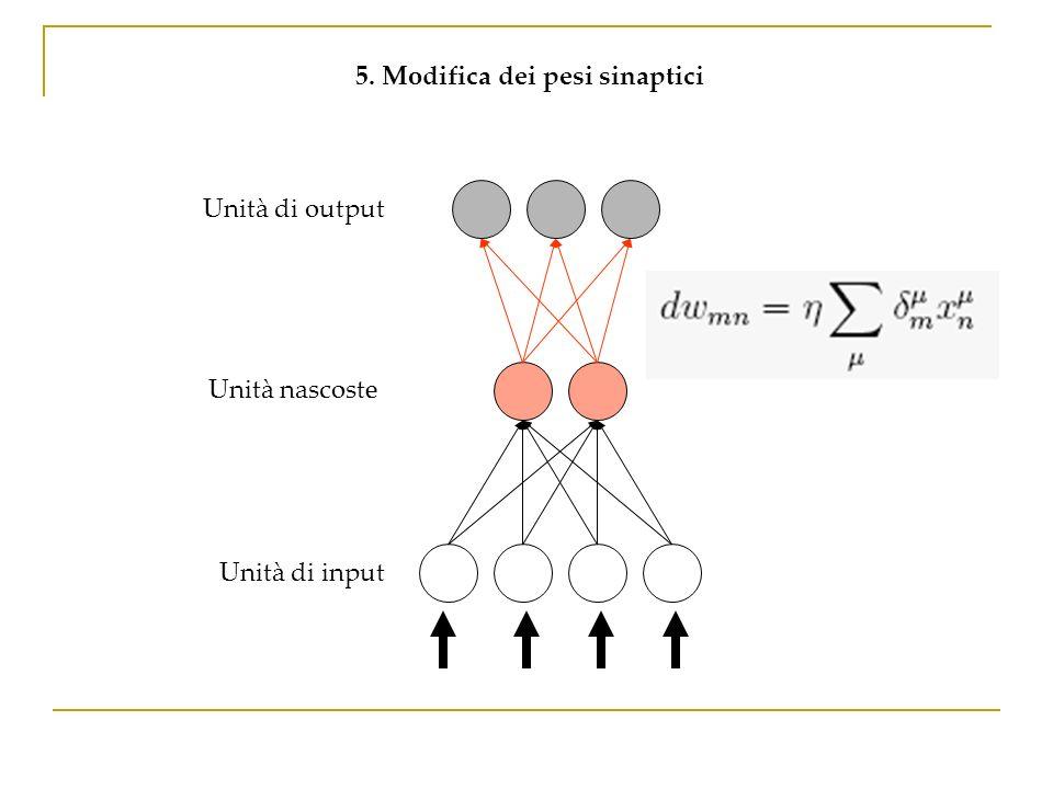 5. Modifica dei pesi sinaptici