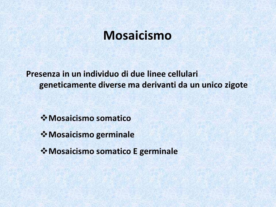 Mosaicismo Presenza in un individuo di due linee cellulari geneticamente diverse ma derivanti da un unico zigote.