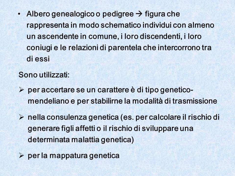 Albero genealogico o pedigree  figura che rappresenta in modo schematico individui con almeno un ascendente in comune, i loro discendenti, i loro coniugi e le relazioni di parentela che intercorrono tra di essi