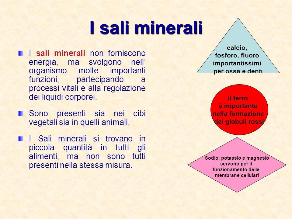 Sodio, potassio e magnesio