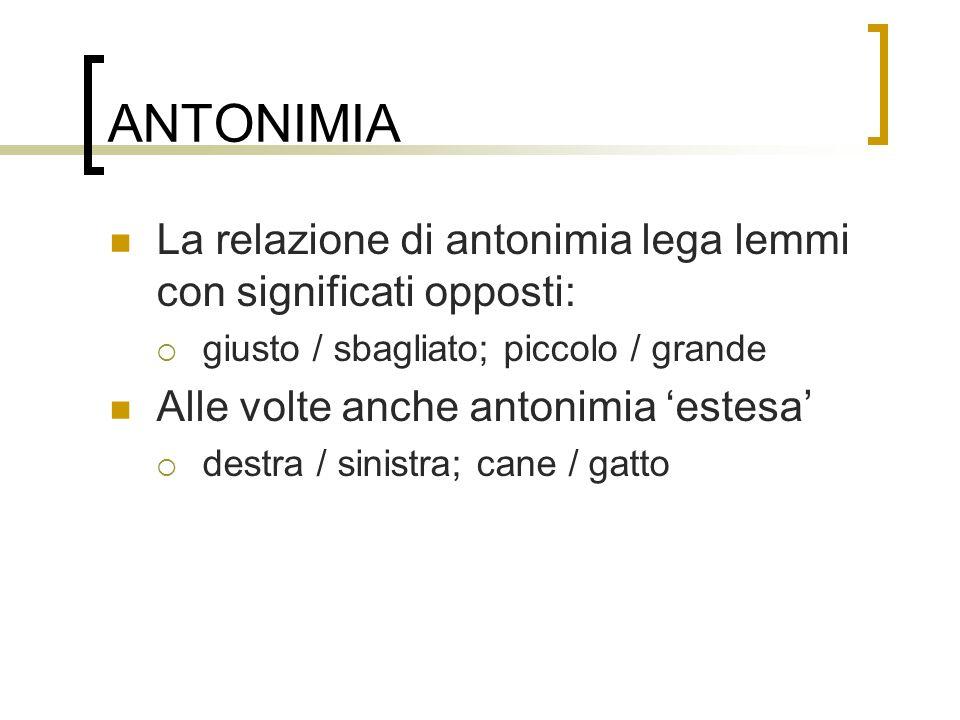 ANTONIMIA La relazione di antonimia lega lemmi con significati opposti: giusto / sbagliato; piccolo / grande.