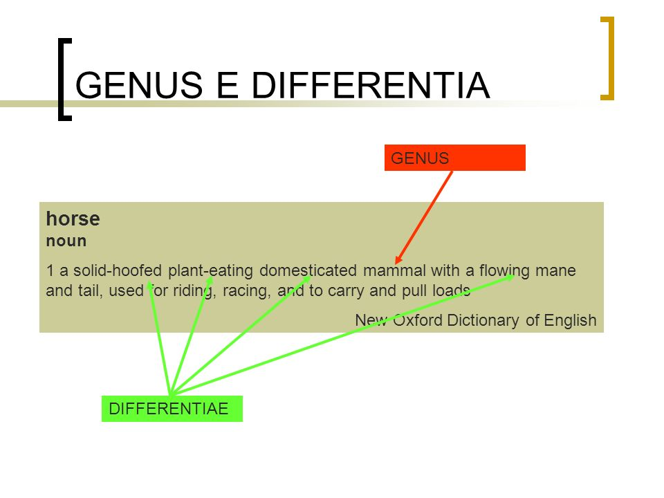 GENUS E DIFFERENTIA horse noun GENUS