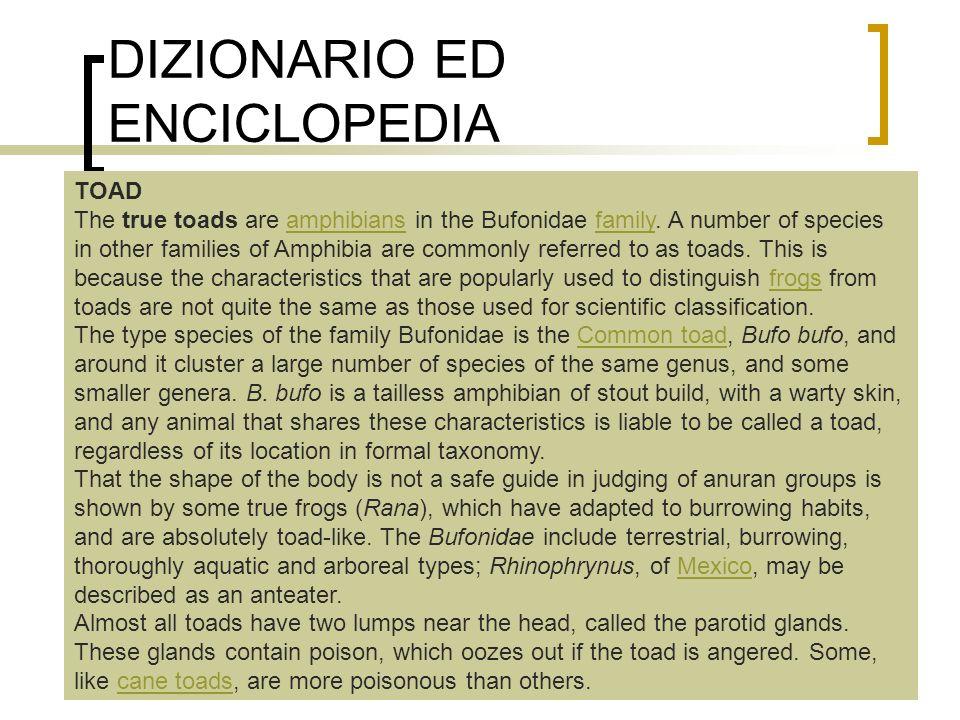 DIZIONARIO ED ENCICLOPEDIA