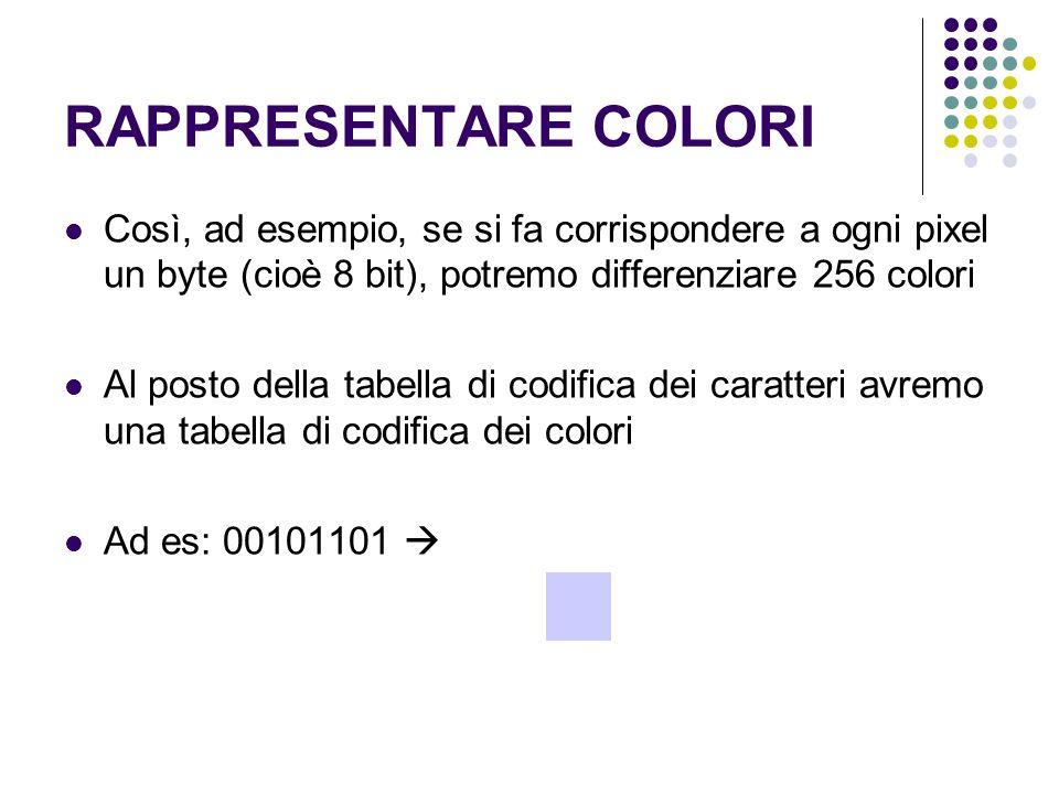 RAPPRESENTARE COLORI Così, ad esempio, se si fa corrispondere a ogni pixel un byte (cioè 8 bit), potremo differenziare 256 colori.