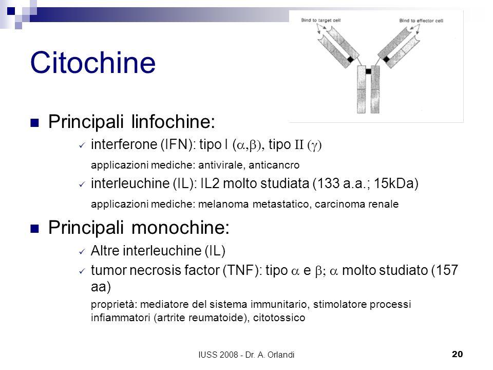 Citochine Principali linfochine: Principali monochine: