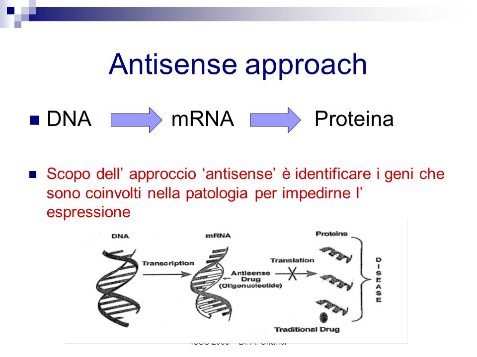 Antisense approach DNA mRNA Proteina