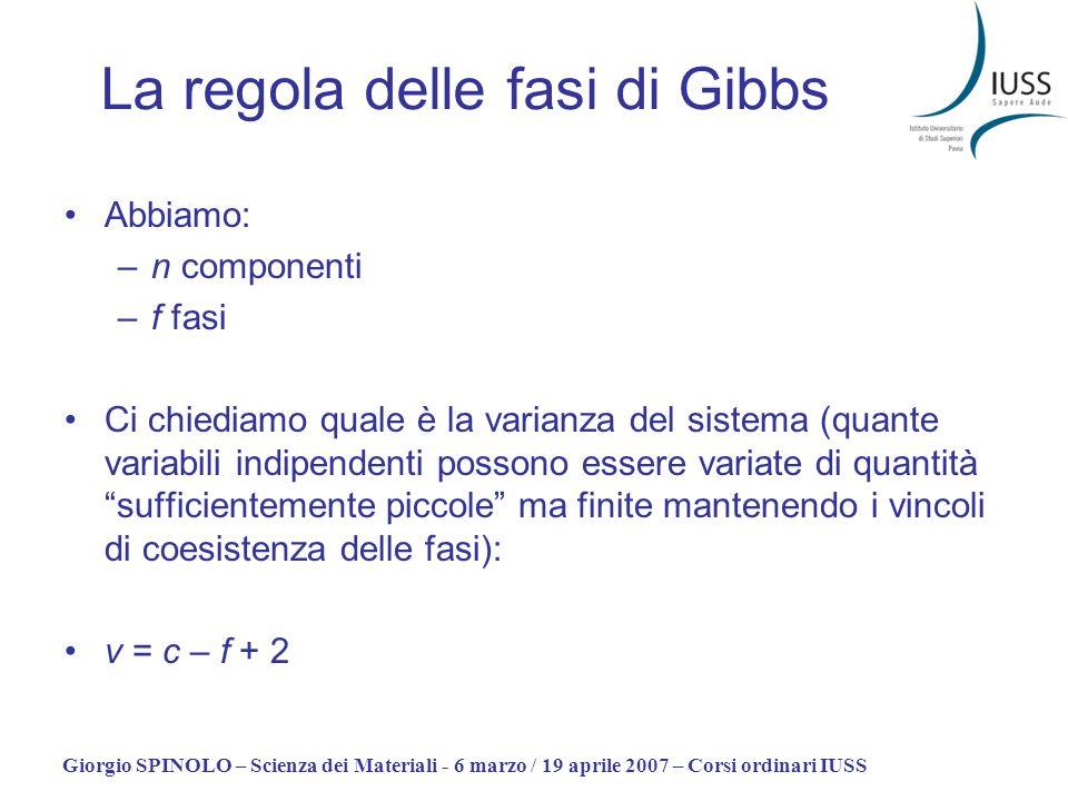 La regola delle fasi di Gibbs