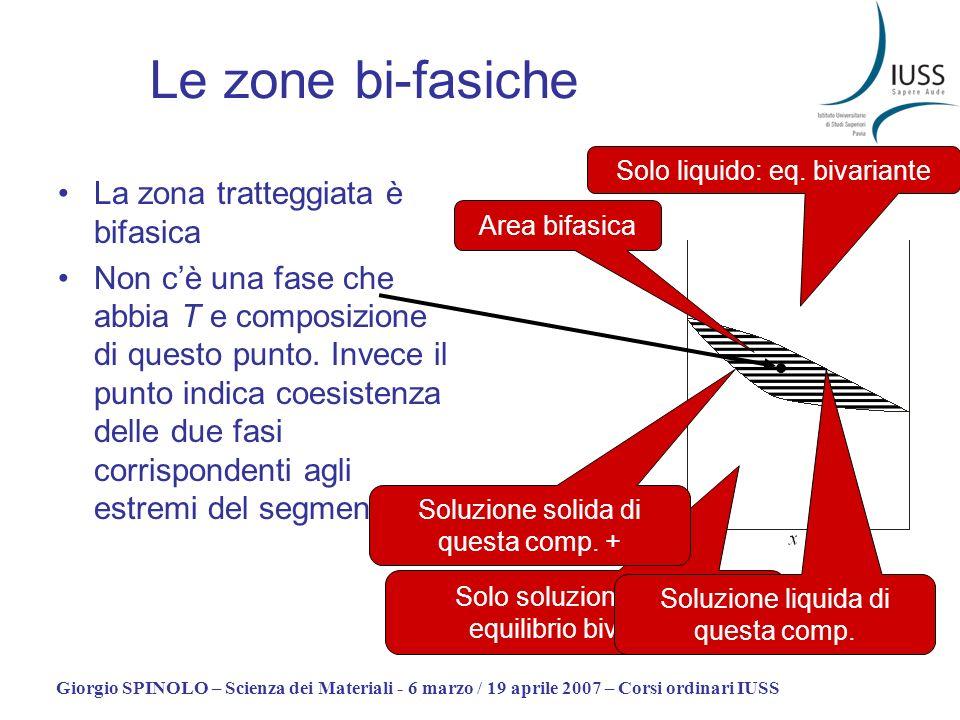Le zone bi-fasiche La zona tratteggiata è bifasica