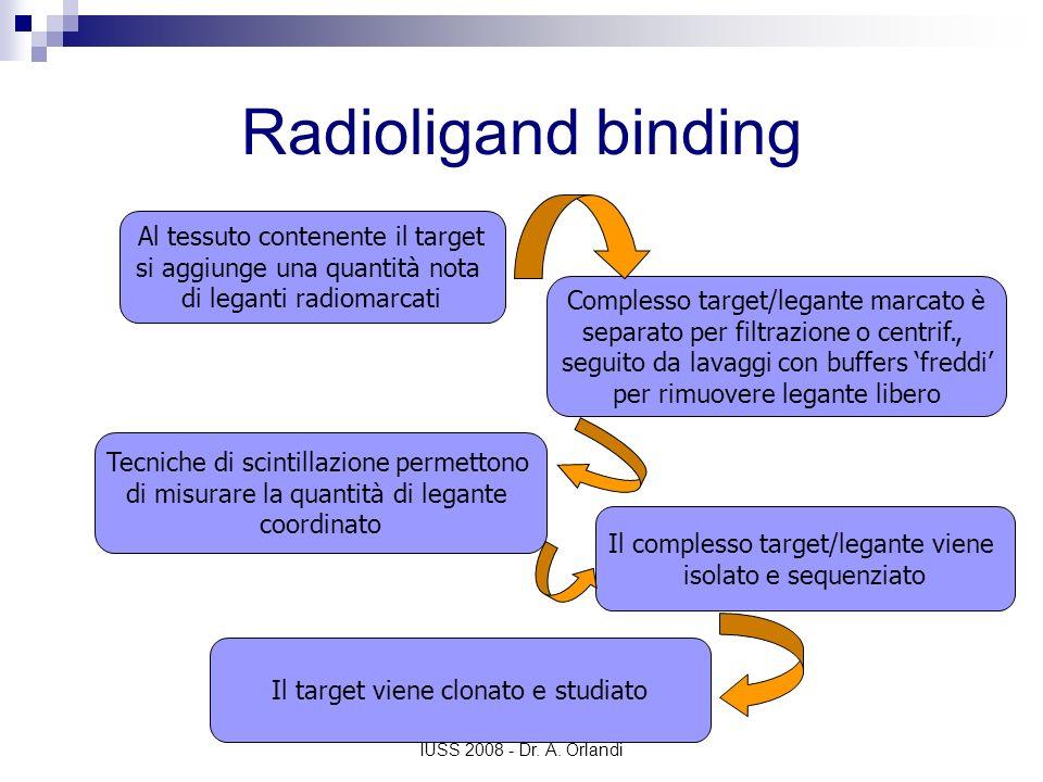 Radioligand binding Al tessuto contenente il target