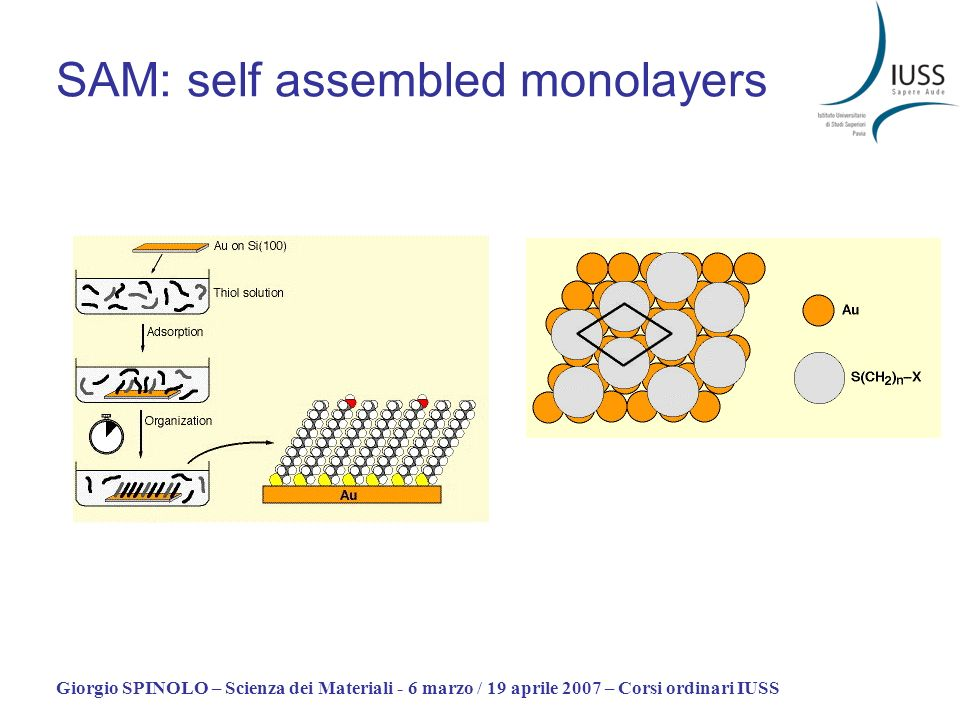 SAM: self assembled monolayers
