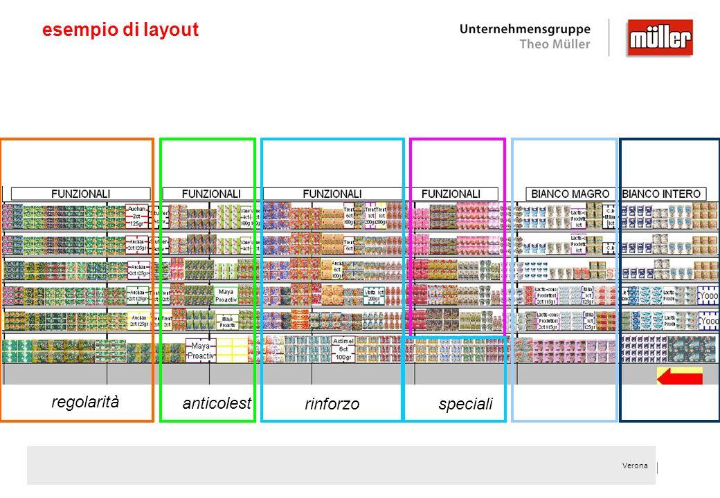 esempio di layout regolarità anticolest rinforzo speciali
