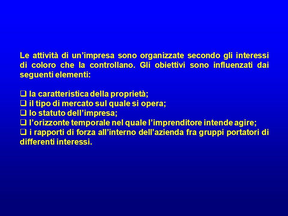 Le attività di un'impresa sono organizzate secondo gli interessi di coloro che la controllano. Gli obiettivi sono influenzati dai seguenti elementi: