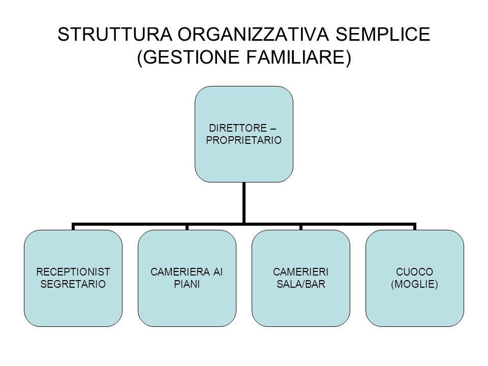 STRUTTURA ORGANIZZATIVA SEMPLICE (GESTIONE FAMILIARE)