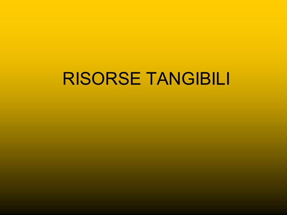 RISORSE TANGIBILI