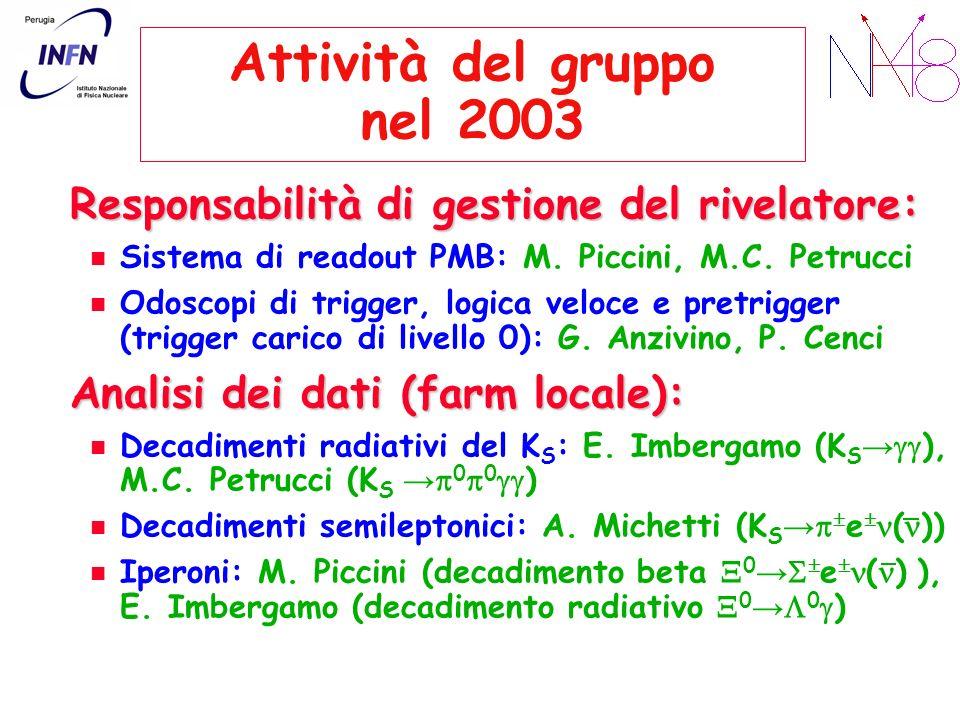 Attività del gruppo nel 2003