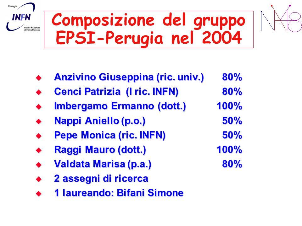 Composizione del gruppo EPSI-Perugia nel 2004