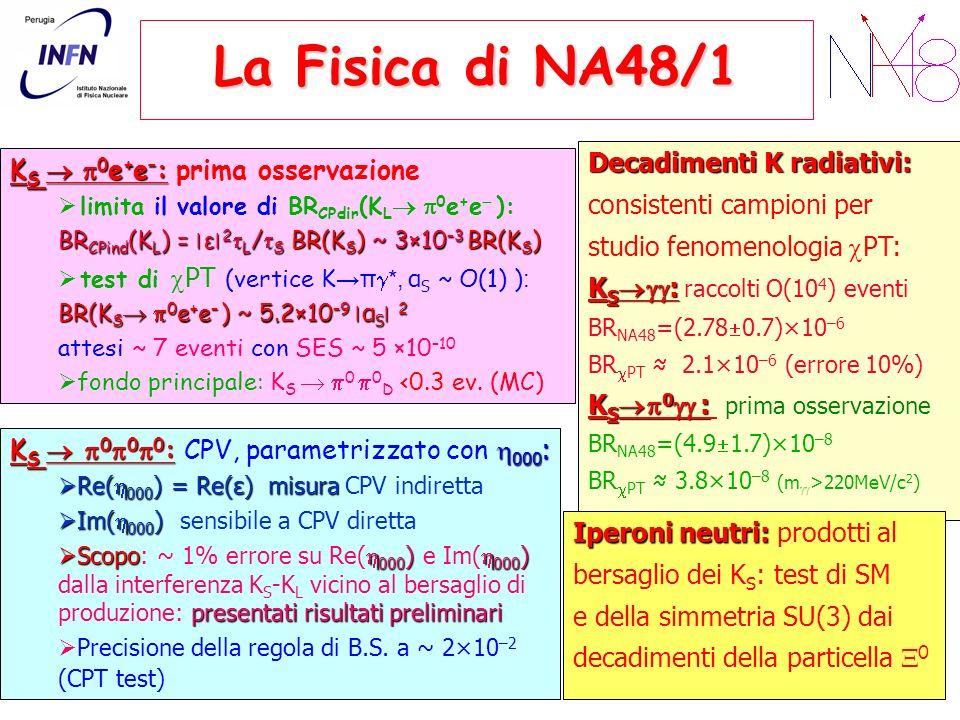 La Fisica di NA48/1 Decadimenti K radiativi:
