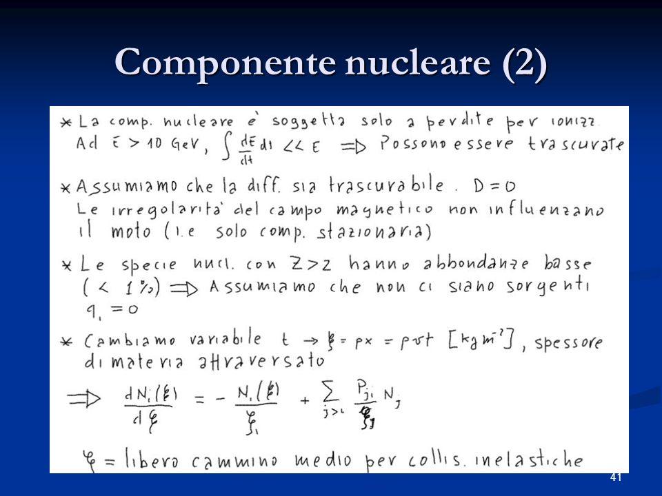 Componente nucleare (2)