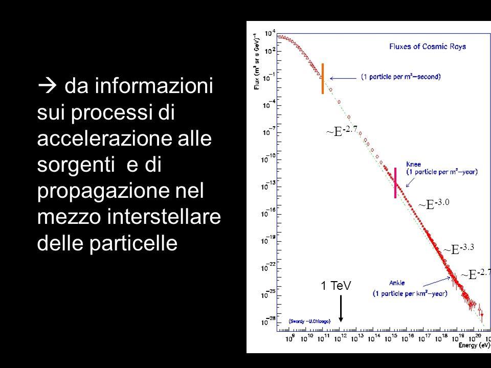  da informazioni sui processi di accelerazione alle sorgenti e di propagazione nel mezzo interstellare delle particelle