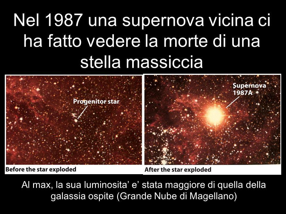 Nel 1987 una supernova vicina ci ha fatto vedere la morte di una stella massiccia
