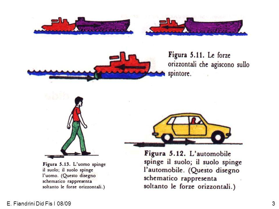 E. Fiandrini Did Fis I 08/09