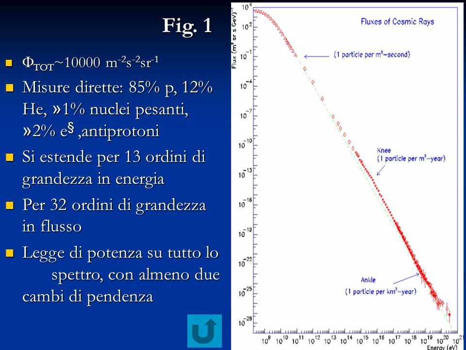 Fig. 1 TOT~10000 m-2s-2sr-1. Misure dirette: 85% p, 12% He, »1% nuclei pesanti, »2% e§ ,antiprotoni.