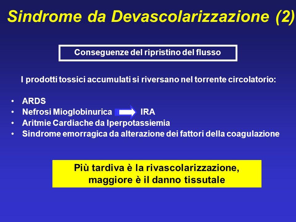 Sindrome da Devascolarizzazione (2)