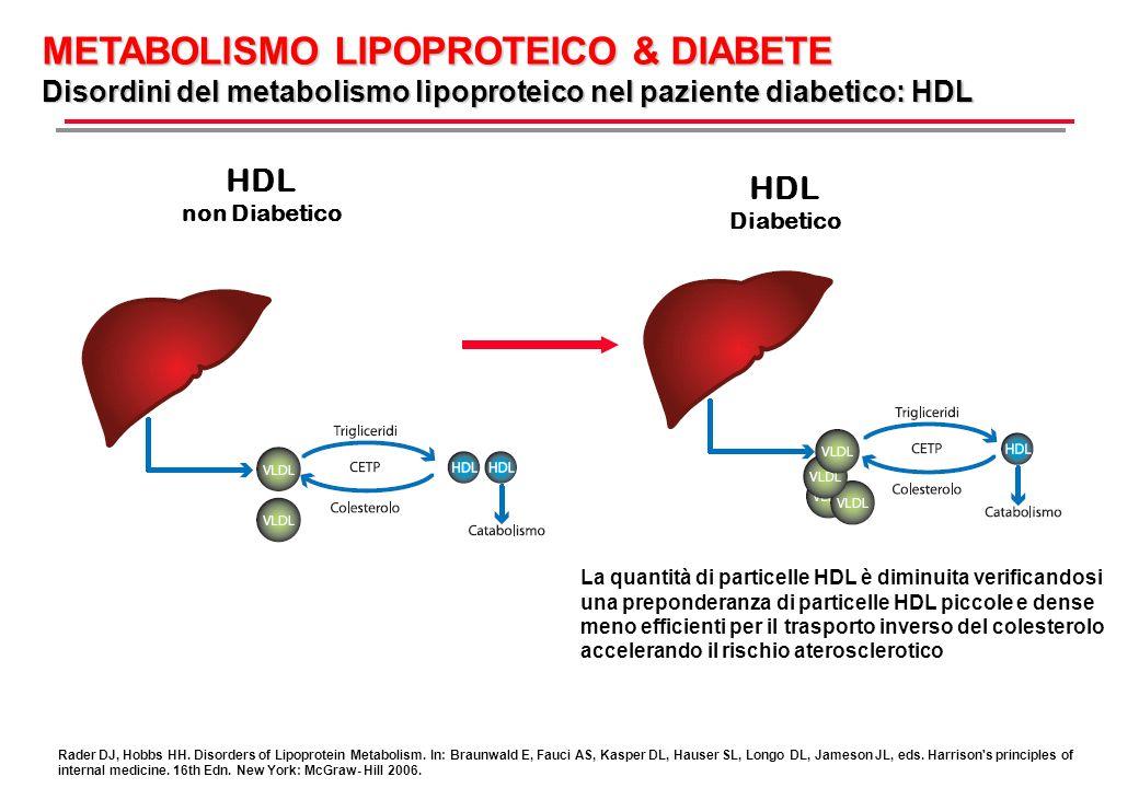 METABOLISMO LIPOPROTEICO & DIABETE