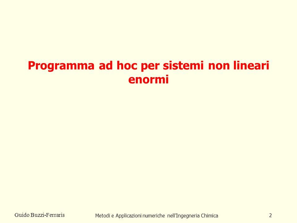 Programma ad hoc per sistemi non lineari enormi