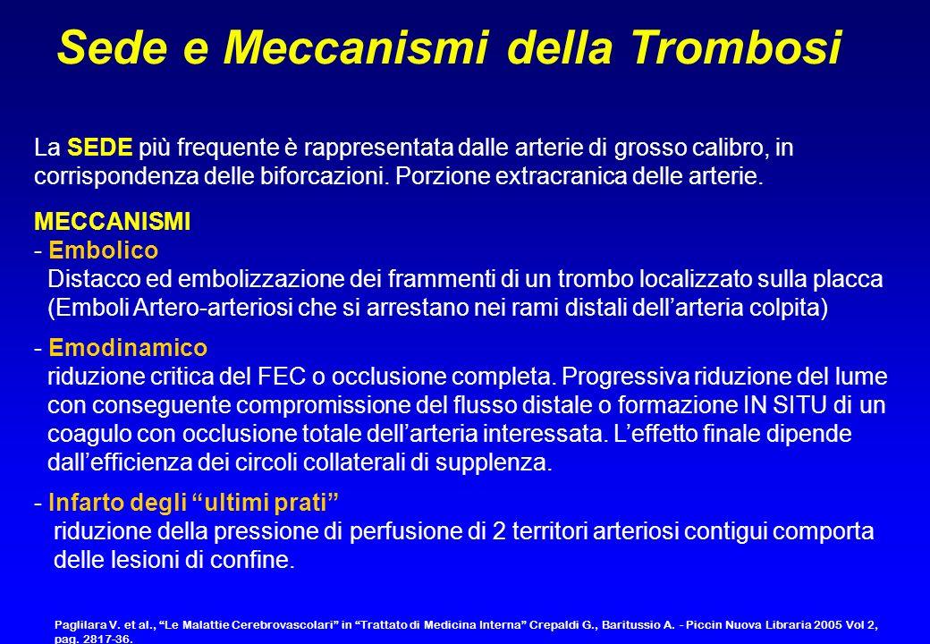 Sede e Meccanismi della Trombosi