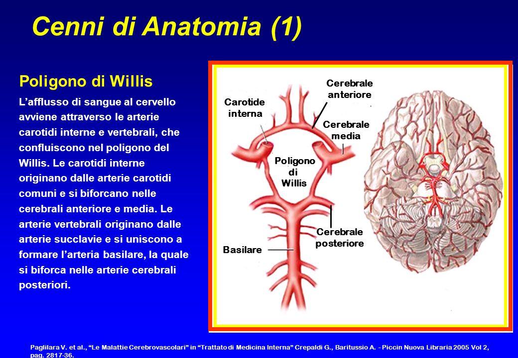 Cenni di Anatomia (1) Poligono di Willis