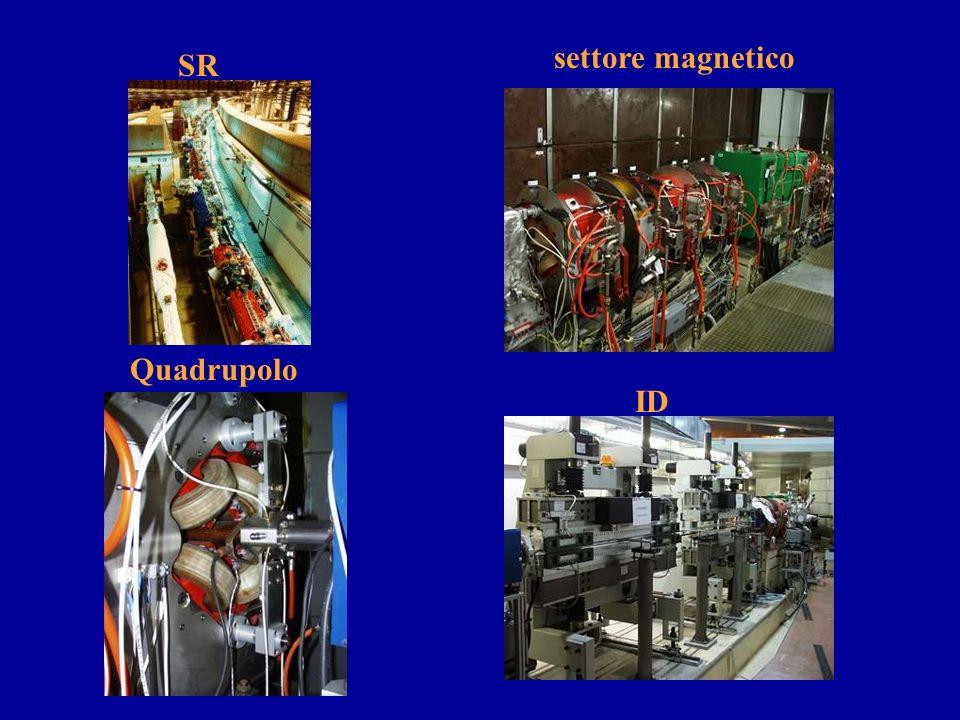 settore magnetico SR Quadrupolo ID