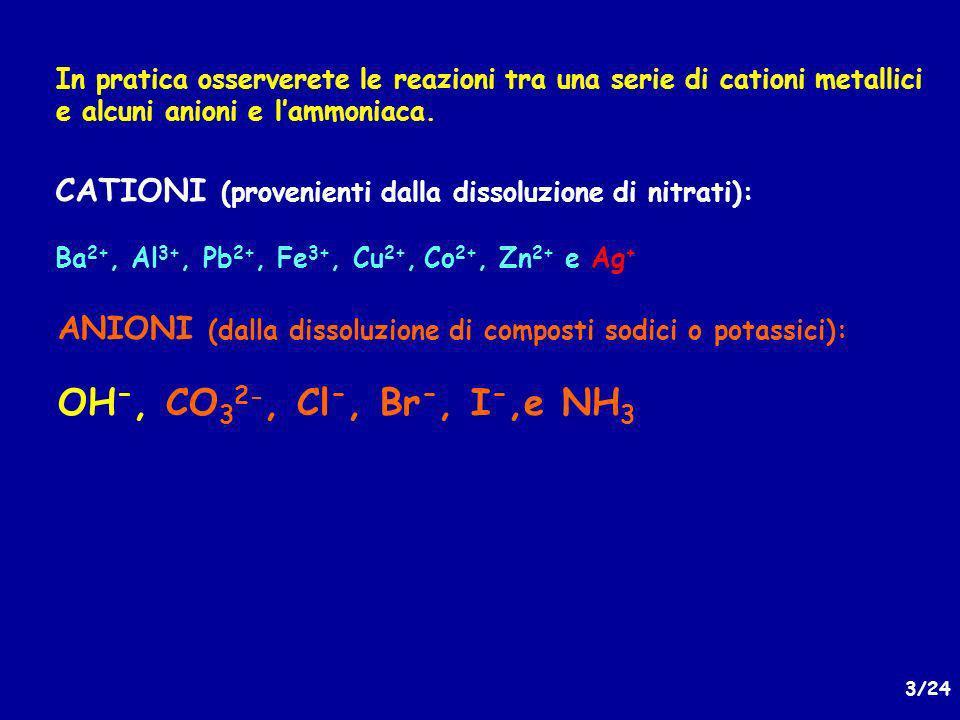 CATIONI (provenienti dalla dissoluzione di nitrati):