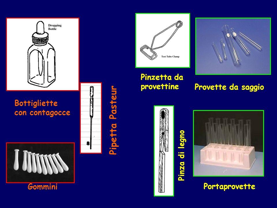 Pipetta Pasteur Pinzetta da provettine Provette da saggio