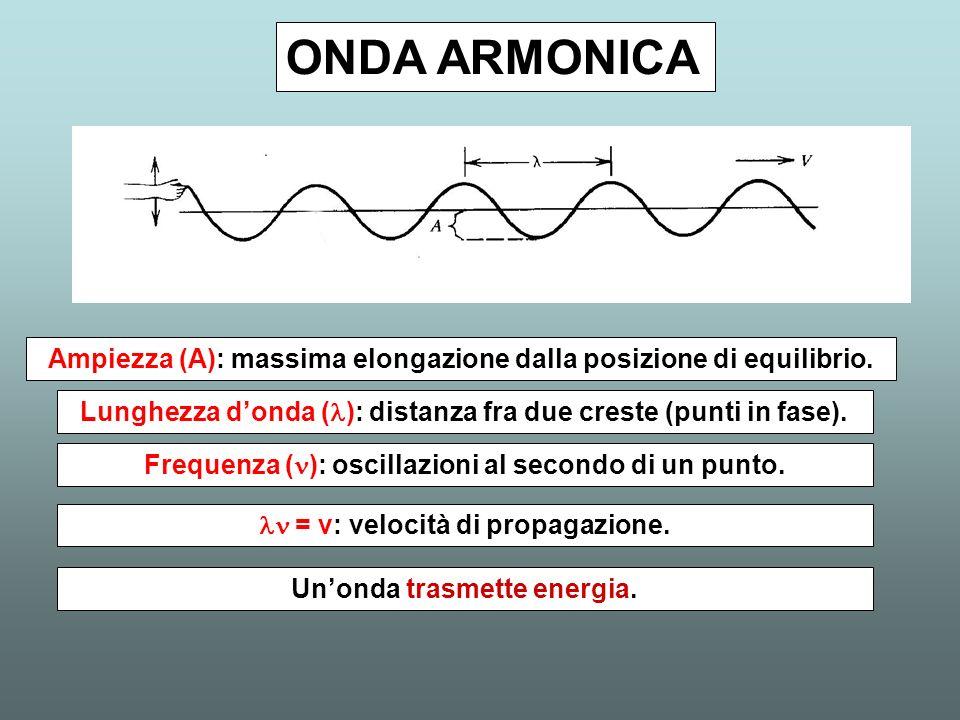 ONDA ARMONICA Ampiezza (A): massima elongazione dalla posizione di equilibrio. Lunghezza d'onda (l): distanza fra due creste (punti in fase).