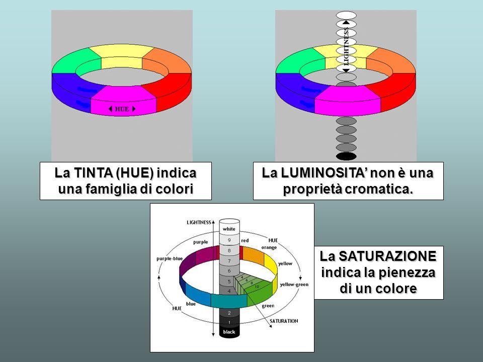 La TINTA (HUE) indica una famiglia di colori